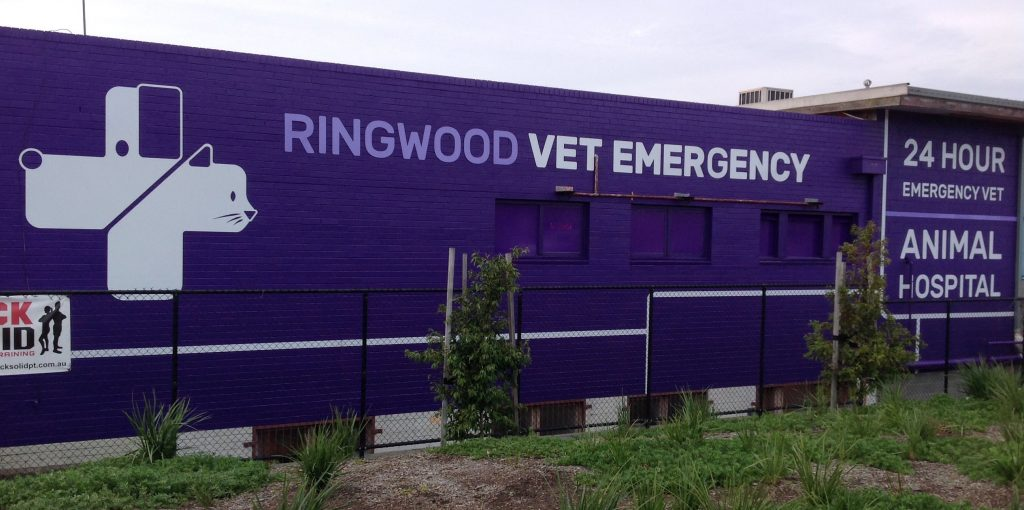 Ringwood Vet Emergency 1