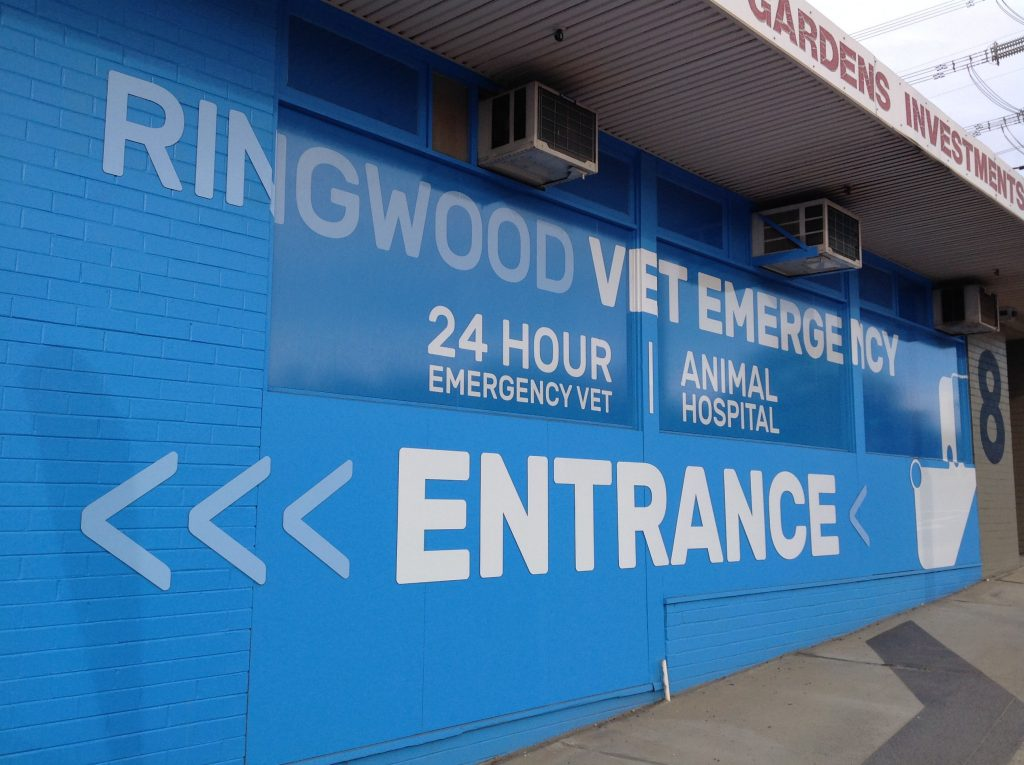 Ringwood Vet Emergency 2